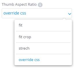 Thumb Aspect Ratio settings